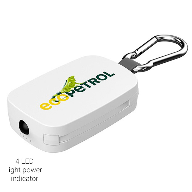 Go charge branded example